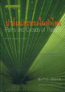 ปาล์มและปรงในป่าไทย