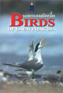 นกแหลมผักเบี้ย