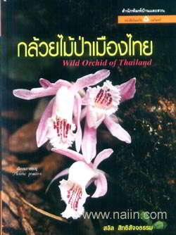 กล้วยไม้ป่าเมืองไทย