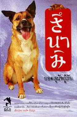 สึนามิ ยอดสุนัขกู้ภัย
