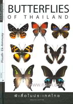 Butterflies of Thailand (Eng)