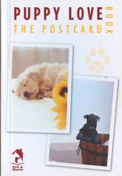 PUPPY Love The Postcard
