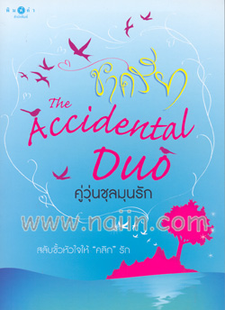 คู่วุ่นชุลมุนรัก The Accidental Duo