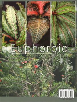 ร้อยพรรณพฤกษา ยูโฟเบีย Euphorbia