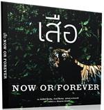 เสือ Now or Forever