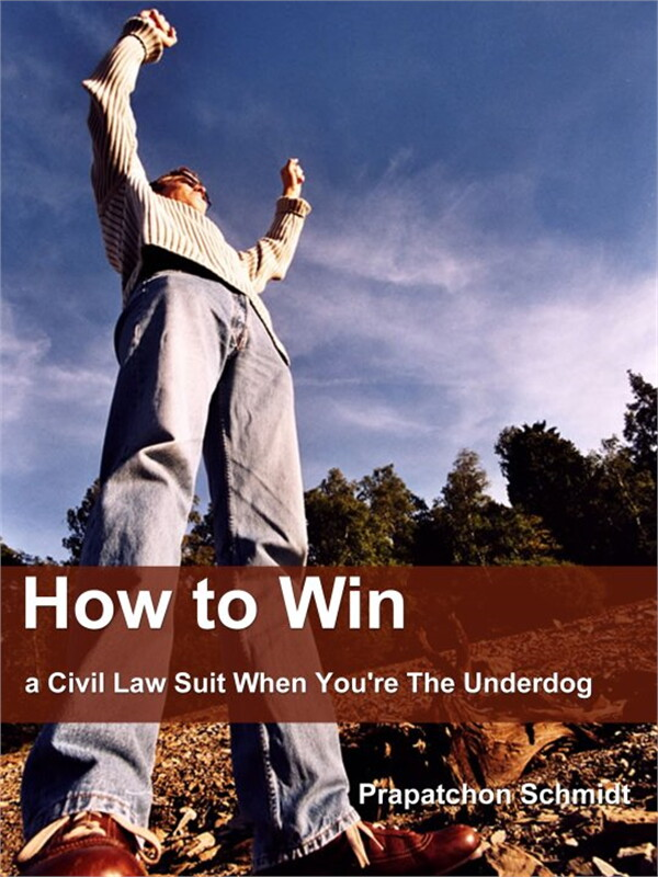 How to Win a Civil Law Suit When You're