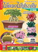 นิตยสาร ไม้ดอกไม้ประดับ ฉ.225 พ.ย 58