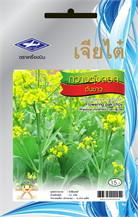 HGกวางตุ้งดอก ต้นขาว ซ. 10g