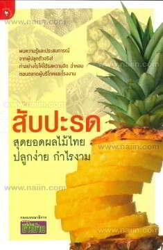 สับปะรด สุดยอดผลไม้ไทย ปลูกง่าย กำไรงาม