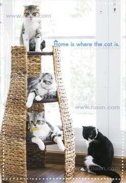 สมุดโน้ตทูนหัวฯ 2 Home is where the cat.