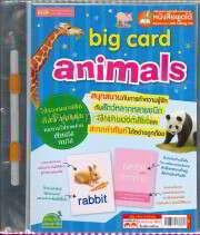 แฟ้ม Big Card Animals