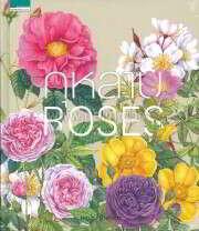 กุหลาบ : Roses