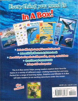 Dolphin & Whale in a Box