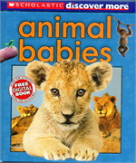 SCHOLASTIC DISCOVER MORE: ANIMAL BABIES