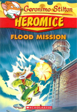 GS HEROMICE 3 FLOOD MISSION