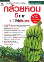 กล้วยหอม 5 ภาค 1ไร่ได้เกินแสน