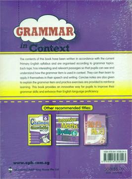 P6 Grammar In Context
