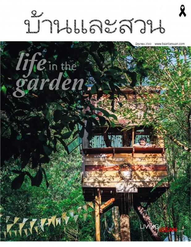 บ้านและสวน ฉ.490 (มิ.ย.60)