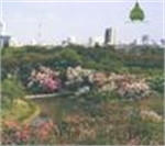 สวนสมเด็จพระนางเจ้าฯ(ป่าเล็กในเมืองใหญ่)
