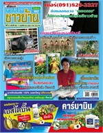 เทคโนโลยีชาวบ้าน ฉบับที่ 682 ปักษ์แรก พฤศจิกายน 2561