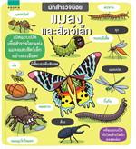 นักสำรวจน้อย แมลงและสัตว์เล็ก