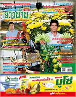 เทคโนโลยีชาวบ้าน ฉบับที่ 706 ปักษ์แรก พฤศจิกายน 2562