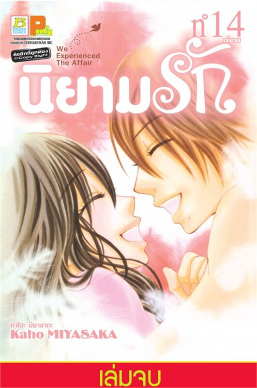 นิยามรัก เล่ม 14 (เล่มจบ)