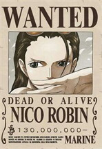 Poster wanted Robin