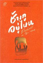 ช้างกูอยู่ไหน : Elephant in the Room