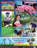 เทคโนโลยีชาวบ้าน ฉบับที่ 730 ปักษ์แรก พฤศจิกายน 2563
