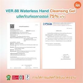 VER.88 WATERLESS HAND CLEANSING GEL250ML