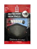 GQ Max Mask PM2.5