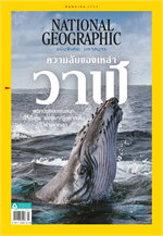 NATIONAL GEOGRAPHIC ฉบับพิเศษ: มหาสมุทร  ฉบับที่ 238 (พฤษภาคม 2564)