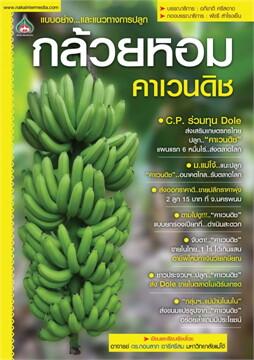 กล้วยหอมคาเวนดิช